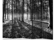 Paraván - Grey Wilderness II [Room Dividers]